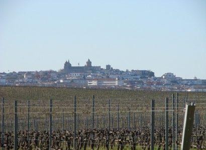 8 de Julho: Paróquia de Santo Antão realiza Procissão de Nossa Senhora da Saúde em Évora