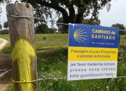 Presidente da República apresenta novo percurso dos «Caminhos de Santiago»
