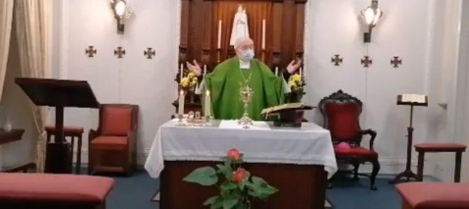 Dia 31 de janeiro: Arcebispo de Évora presidiu à Eucaristia dominical pelo fim da pandemia